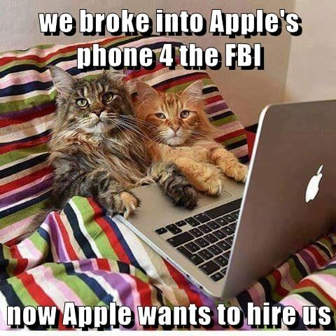 we broke into Apple's phone 4 the FBI  now Apple wants to hire us
