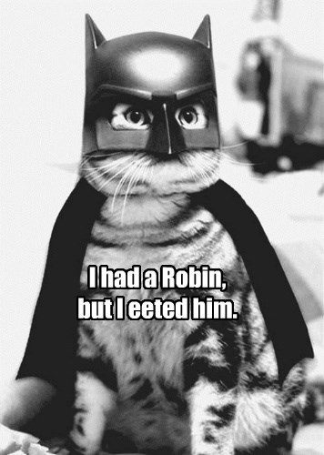 cat,robin,eat,batman,caption