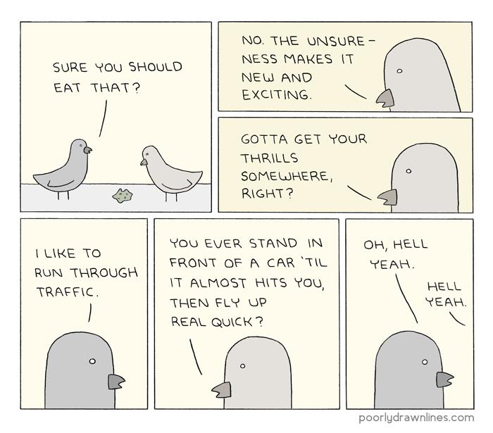 birds-funny-conversation-new-experiences-web-comics