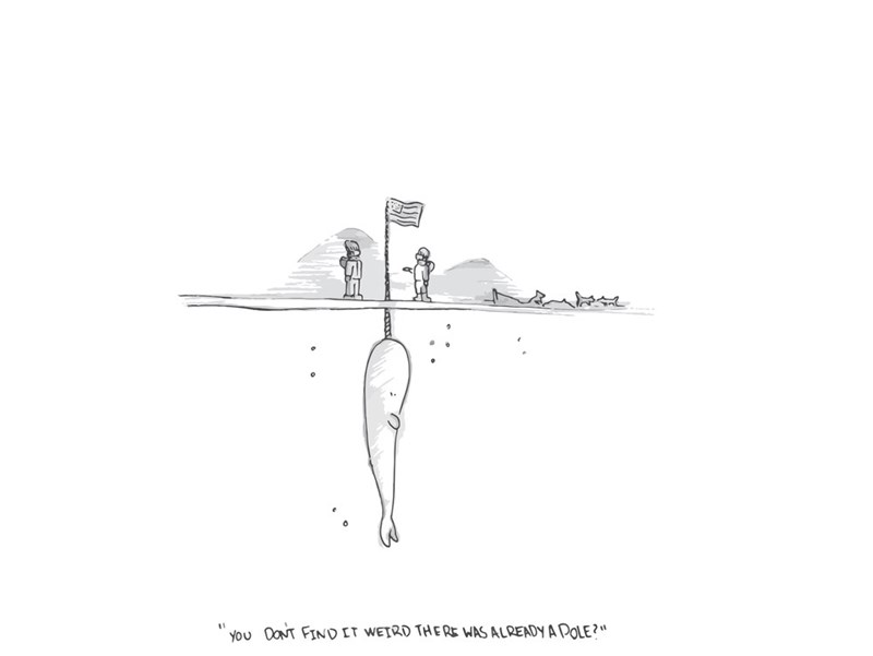 web-comics-narwhal-mysterious-pole-digging