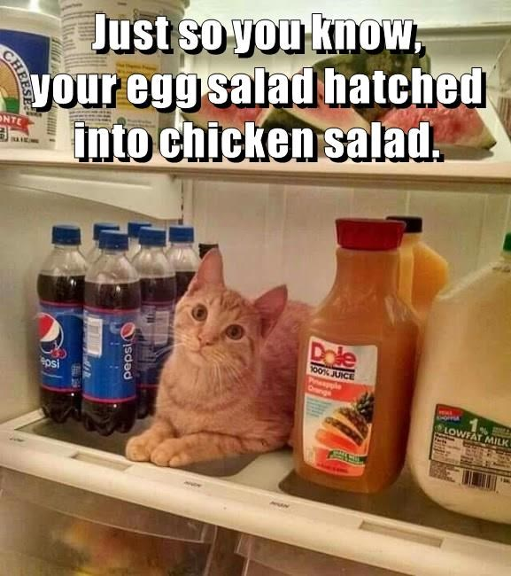 Just so you know, your egg salad hatched into chicken salad.