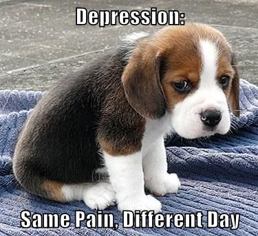 Depression:  Same Pain, Different Day