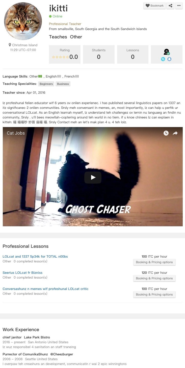 fake cat pretends it used to work for cheezburger