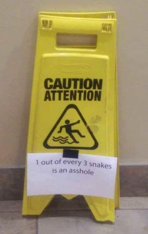 snakes signs I Like Those Odds
