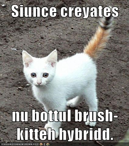 cat,science,hybrid,caption
