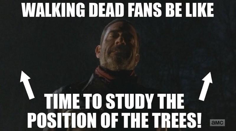 study the trees