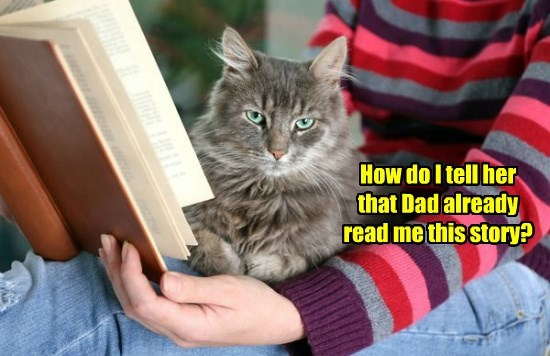 books caption Cats - 8764203264