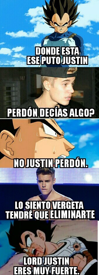 justin insecto