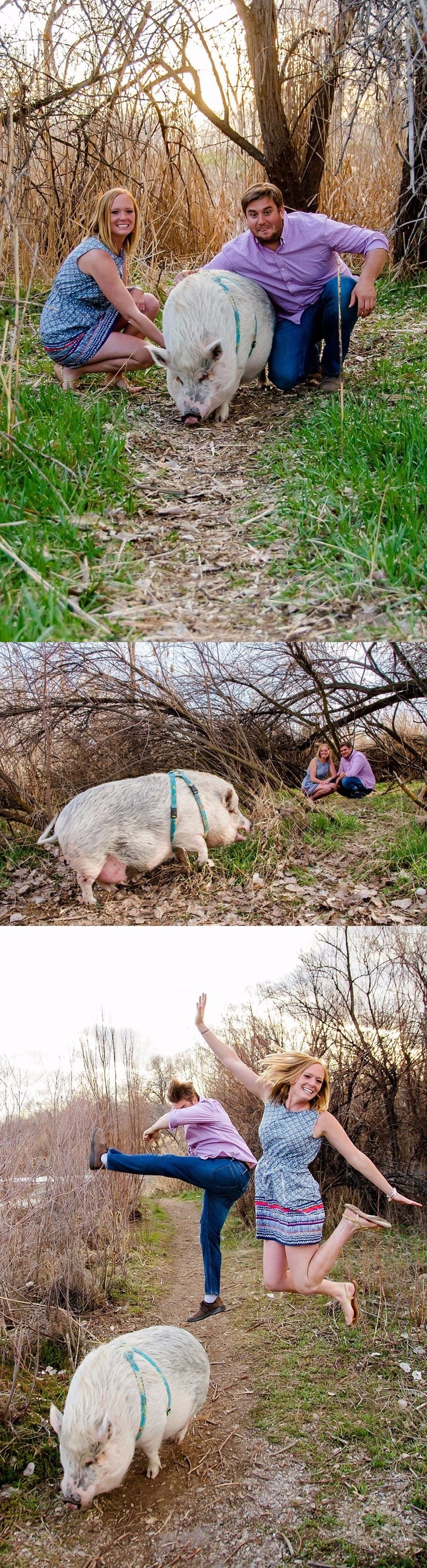 this couple took engagement photos with their pet pig