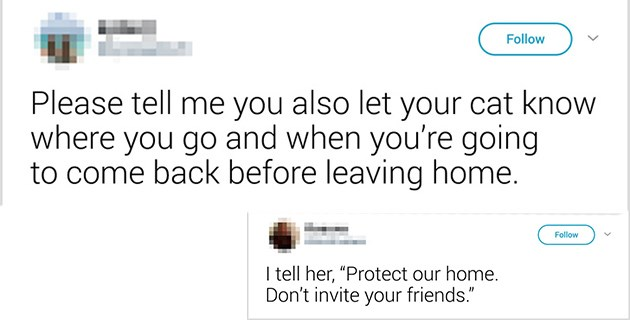 Funny tweets of what people say to their pets when they leave