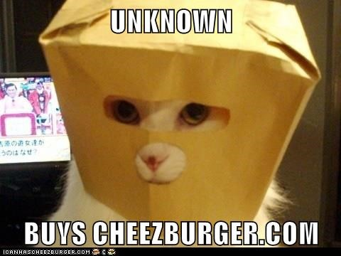 animals cheezburger.com cat buys Unknown caption - 8765000704