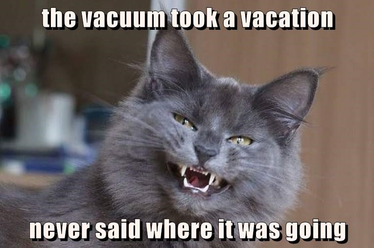 the vacuum took a vacation  never said where it was going
