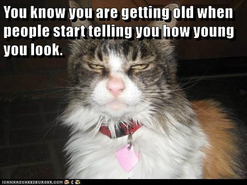 getting old,cat,look,caption,young,telling