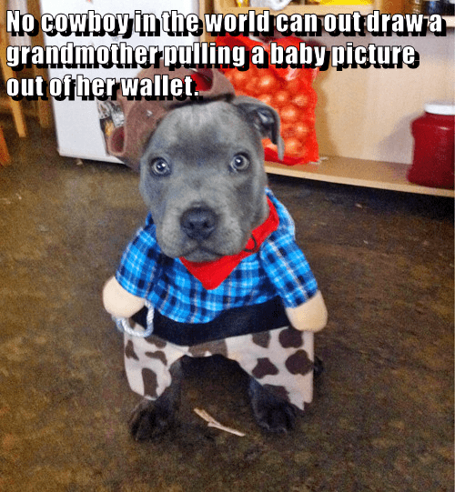 dogs,wallet,cowboy,outdraw,caption,grandmother,Baby Pictures