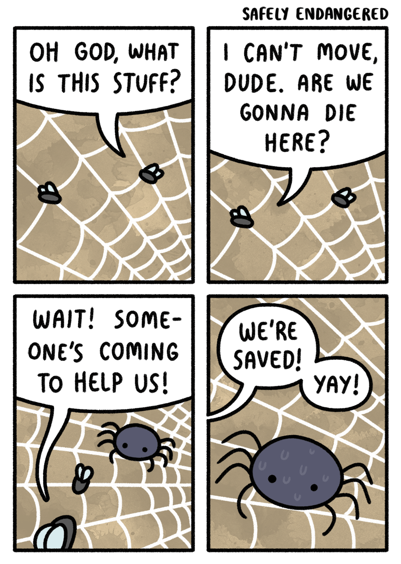 bugs fly spider funny web comics - 8765810432