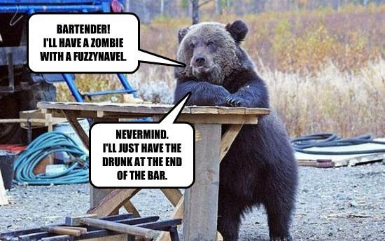 BARTENDER! I'LL HAVE A ZOMBIE WITH A FUZZYNAVEL.