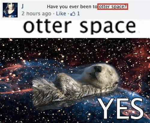 otter space failbook status