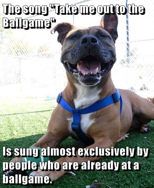animals dogs song ballgame caption - 8765969664