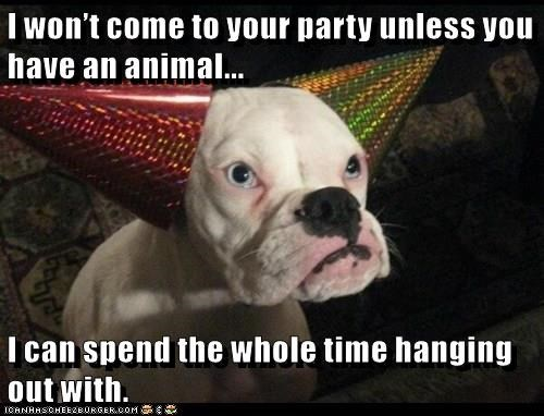 caption,dogs,Party