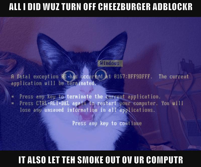 ALL I DID WUZ TURN OFF CHEEZBURGER ADBLOCKR  IT ALSO LET TEH SMOKE OUT OV UR COMPUTR
