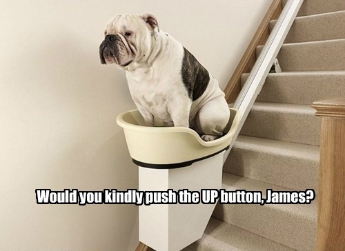 Would you kindly push the UP button, James?