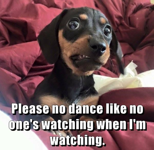 Please no dance like no one's watching when I'm watching.