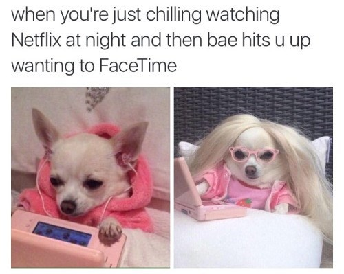 bae texts netflix facetime dolled up