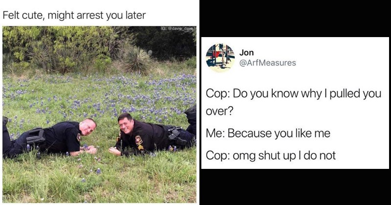 Funny memes, funny tweet about police
