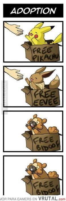 bidoof-pokemon-adoption-struggles-sad-face