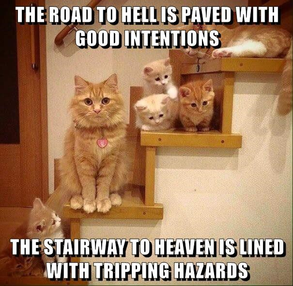 THE ROAD TO HELL IS PAVED WITH GOOD INTENTIONS  THE STAIRWAY TO HEAVEN IS LINED WITH TRIPPING HAZARDS
