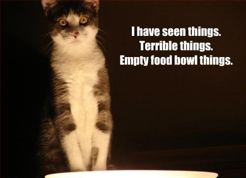 I have seen things. Terrible things. Empty food bowl things.