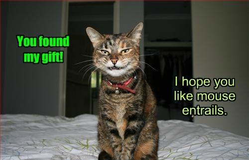 creepy gift caption Cats - 8768477696