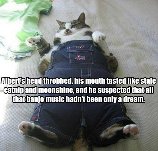 caption Cats overalls - 8768560640