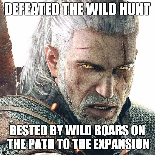 video-game-witcher-logic-fail-moment