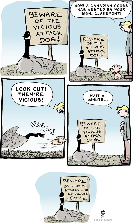 canadian-guard-goose-web-comics-graveyard