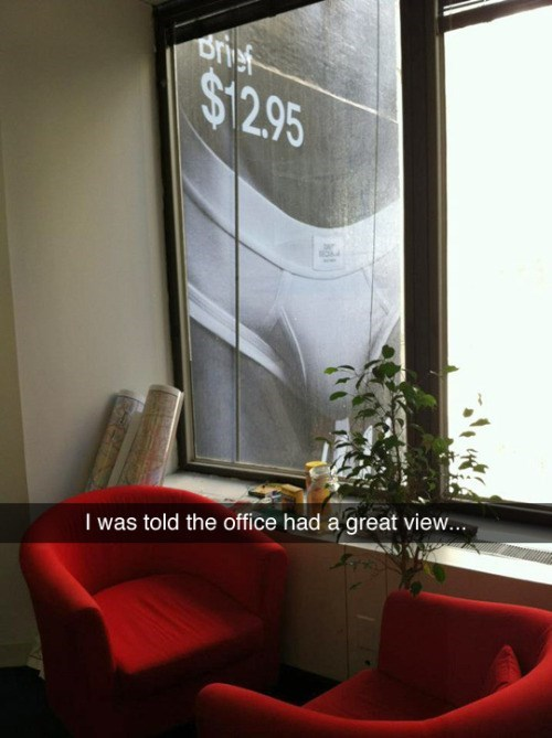 office view puns This View Is Nuts!