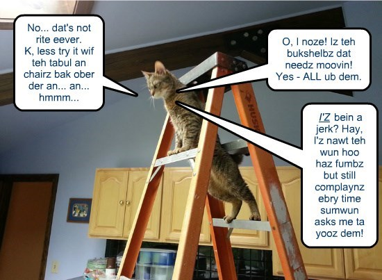 Once again, Overly-Demanding-Decorator Kitteh plays the If-*I*-Had-Thumbs guilt gambit...