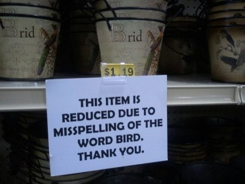 misspelling bird sign This'll Go Great in My Brid Themed Garden!