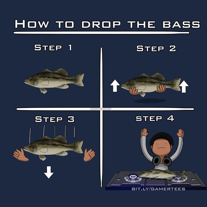 puns,bass,infographic