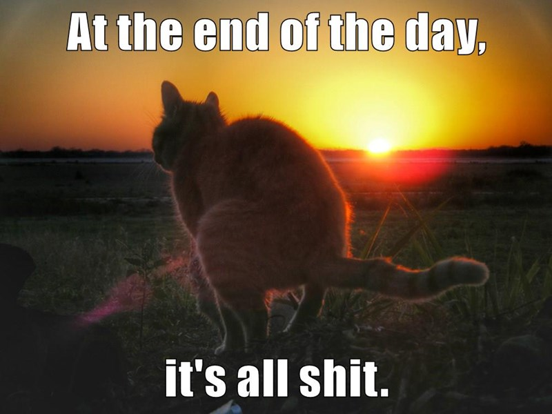 At the end of the day,  it's all shit.