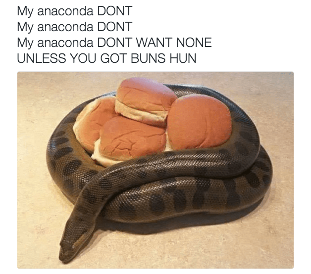 my anaconda dont