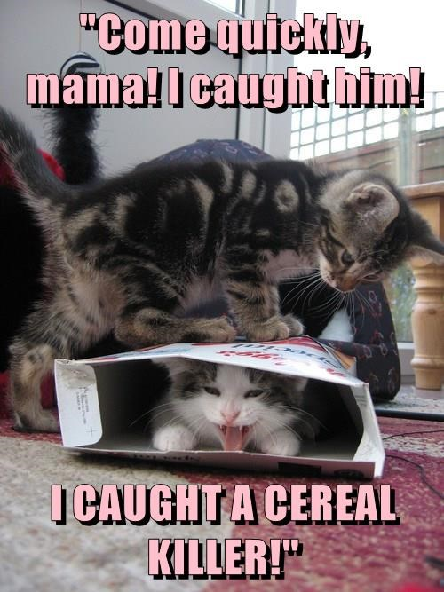 """""""Come quickly, mama! I caught him!  I CAUGHT A CEREAL KILLER!"""""""