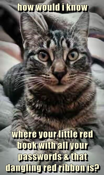 how would i know  where your little red book with all your passwords & that dangling red ribbon is?
