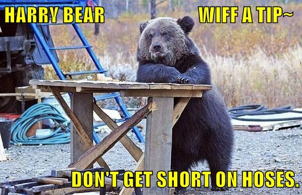 HARRY BEAR                          WIFF A TIP~                                                                      DON'T GET SHORT ON HOSES.