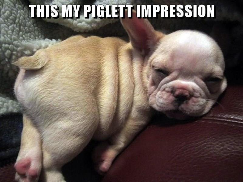 animals piglett impression caption - 8772341760