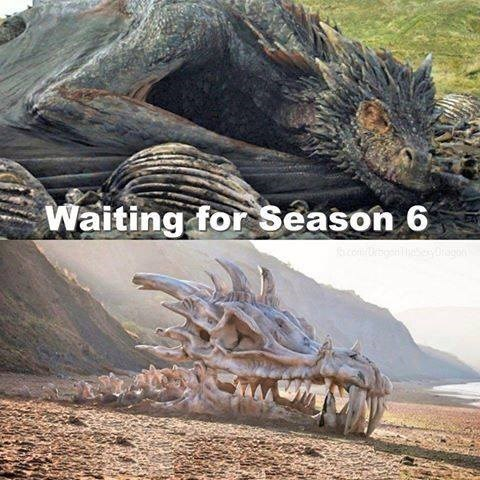 waiting for season 6