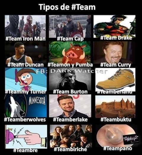 tipos de team