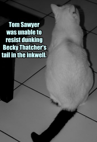 Tom Sawyer  was unable to resist dunking  Becky Thatcher's tail in the inkwell.