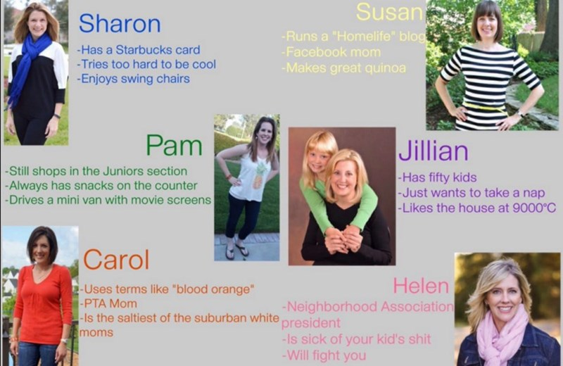 moms personality memes The Internet Is Asking, Which Suburban White Mom Are You?