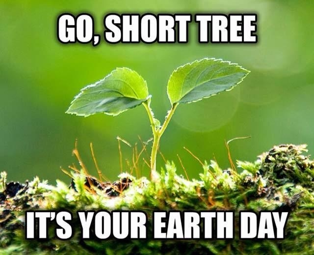 puns trees earth day We Gonna Pot Trees Like It's Your Earth Day